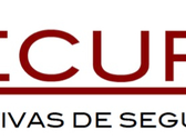 Securis Iniciativas De Seguridad